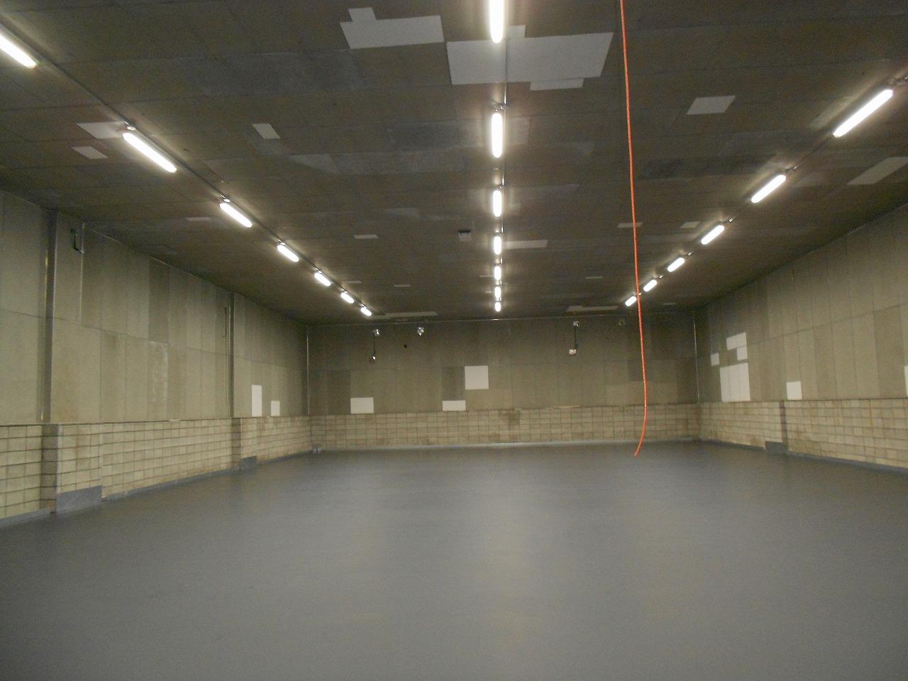 LEDランプ(冷凍仕様)及び床面塗装工事